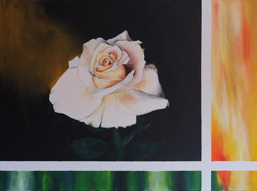 Daniela Böker, Weiße Rose, Plants: Flowers, Naturalism