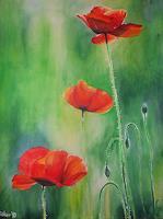 Daniela-Boeker-Plants-Flowers