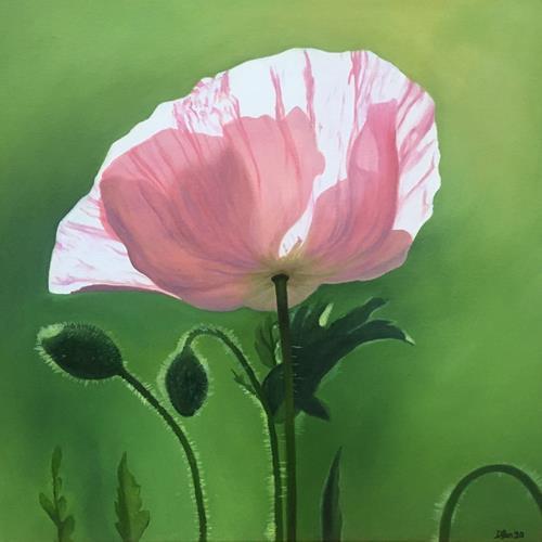 Daniela Böker, pink poppy, Plants: Flowers, Nature: Miscellaneous, Photo-Realism, Expressionism