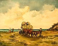 Anka-Hubrich-Harvest