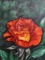 Petra-Wendelken-1-Plants-Flowers-Contemporary-Art-Land-Art