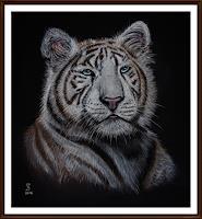 Jacqueline-Scheib-Nature-Earth-Animals-Land