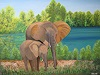Y. Kamer, Mutter und junger Elefant am Sambesi