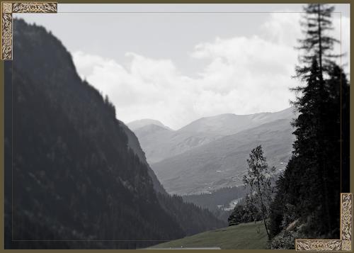 Klaas Kriegeris, Safien Tal, Nature: Wood, Photo-Realism