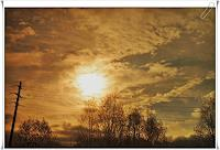 Klaas-Kriegeris-Nature-Miscellaneous
