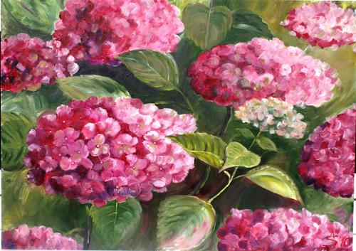 Anett Struensee, Hortensie, Plants: Flowers, Naturalism