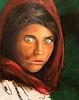 Alex, Afghan