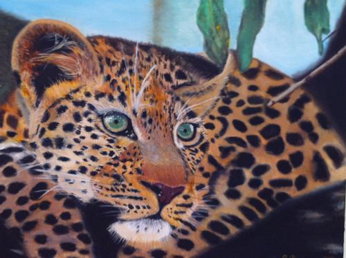 Reto Brüesch, Leopard, Animals: Land, Photo-Realism