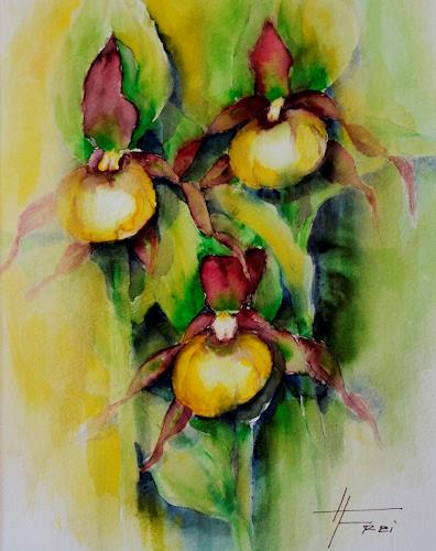 Helga Matisovits, Frauenschuh, Nature, Plants: Flowers