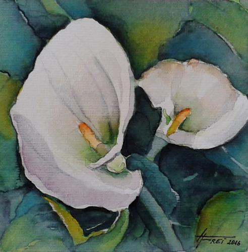 Helga Matisovits, Sumpfcalla I, Nature: Water, Plants: Flowers