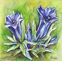 Helga-MATISOVITS-Nature-Plants-Flowers