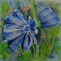Helga-MATISOVITS-Plants-Flowers-Nature