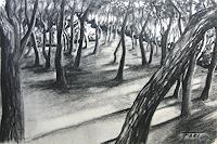 Helga-MATISOVITS-Landscapes-Plants-Trees