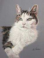 Kerstin-Weber-Miscellaneous-Animals-Modern-Age-Photo-Realism