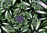 Marlies-Moeckli-Abstract-art-Plants-Flowers-Contemporary-Art-Contemporary-Art