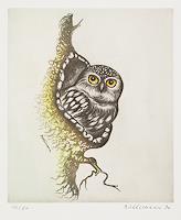 Hans-Ruettimann-Animals-Air-Modern-Times-Realism