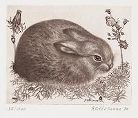 Hans-Ruettimann-Animals-Land-Modern-Times-Realism