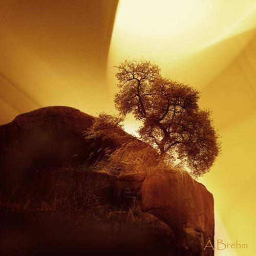 Anke Brehm, Der Baum am Fels, Fantasy, Landscapes, Photo-Realism, Expressionism