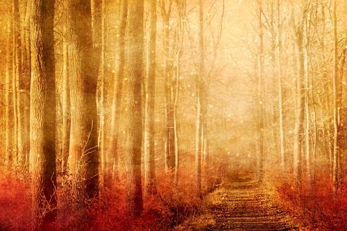 Heike Hultsch, Der zauberhafte Elfenwald, Mythology, Nature: Earth, Romanticism, Expressionism