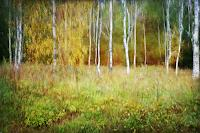 Heike-Hultsch-Plants-Trees-Landscapes-Autumn-Modern-Age-Impressionism-Neo-Impressionism