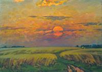 BelS, Wheat field