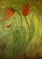Katharina-Frei-Boos-Plants-Flowers-Nature-Miscellaneous
