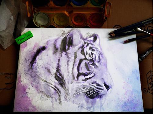 Alexander Déboir, Wildlife: Tiger, Animals: Land