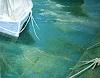 C. Mesnil, The Boat