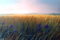 Claire Mesnil, Meadow