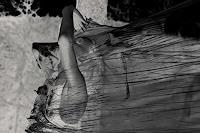 WirLiebe-fotografie.kunst.leben-Emotions-Fear-People-Women-Contemporary-Art-Contemporary-Art