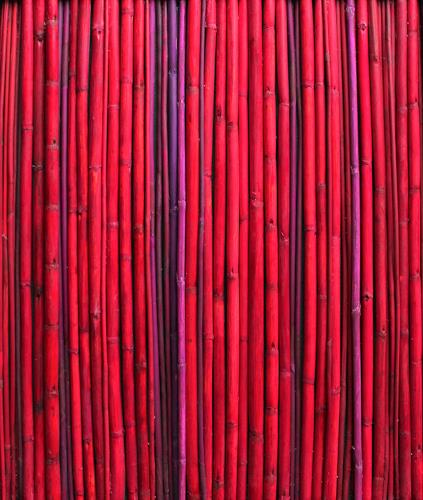Friedhelm Raffel, Rotes Rohr, Miscellaneous Plants, Modern Age, Abstract Expressionism