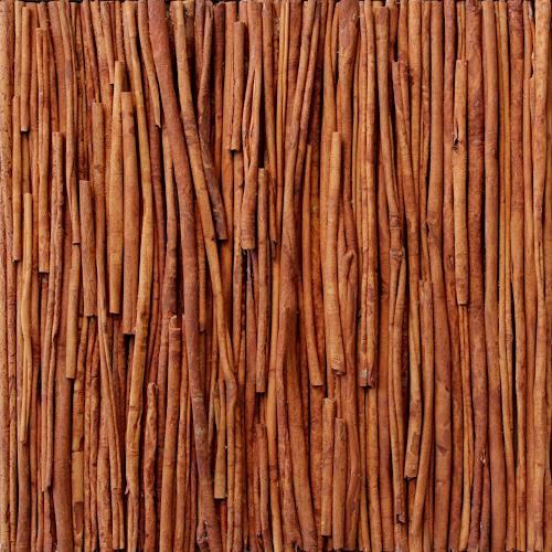 Friedhelm Raffel, Cinnamomum verum, Plants, Impressionism, Abstract Expressionism