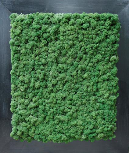 Friedhelm Raffel, Moosteppich, Plants, Abstract Art, Expressionism