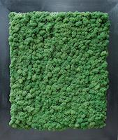 Friedhelm-Raffel-Plants-Modern-Age-Abstract-Art