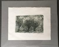 Sabine-Mueller-Landscapes-Miscellaneous-Landscapes-Contemporary-Art-Contemporary-Art