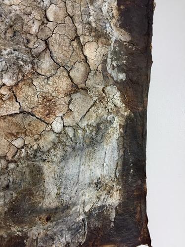 Christiane Mohr, Versteinerung Detailaufnahme, Landscapes, Contemporary Art