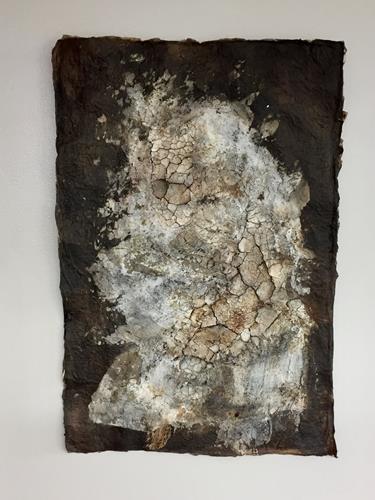 Christiane Mohr, Versteinerung, Plants, Miscellaneous Plants, Contemporary Art