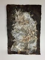 Christiane-Mohr-Plants-Miscellaneous-Plants-Contemporary-Art-Contemporary-Art