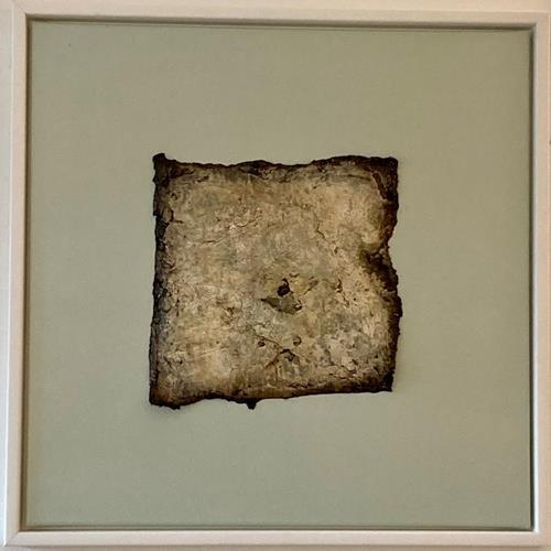 Christiane Mohr, Versteinerung, Nature: Earth, Nature: Rock, Abstract Art