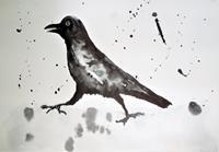 Veronika-Ulrich-Animals-Air-Nature-Air-Modern-Age-Abstract-Art