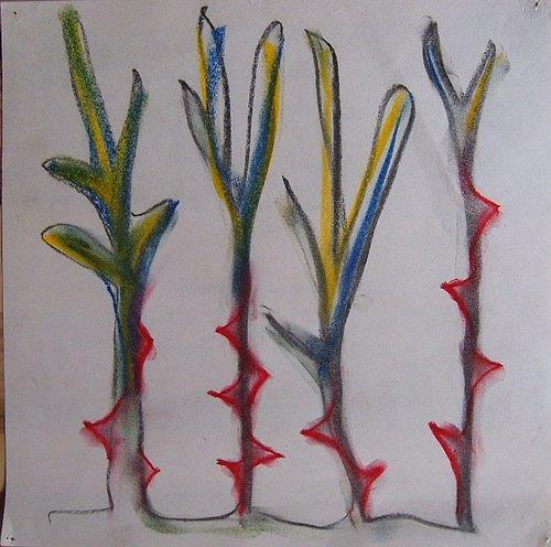Mirjam Schadendorf, Dornenpflanzen 1, Plants: Flowers, Modern Age