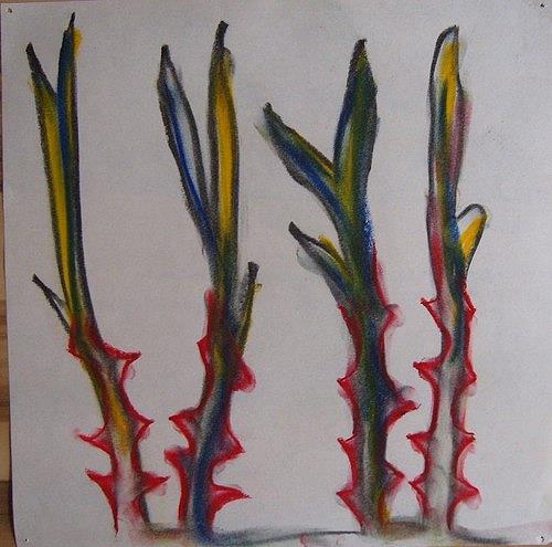 Mirjam Schadendorf, Dornenpflanzen 2, Plants: Flowers, Modern Age