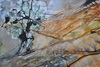 Christine Steeb, Albland, Landscapes, Nature, Contemporary Art