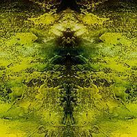 Marina-Kowalski-Nature-Modern-Age-Abstract-Art