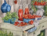 B. C. Davila, Tomaten (Erntezeit )