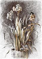 Susanne-Thaesler-Plants-Flowers-Burlesque-Modern-Age-Expressive-Realism