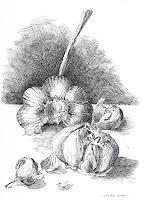 Susanne-Thaesler-Wollenberg-Plants-Fruits-Burlesque