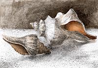 Susanne-Thaesler-Animals-Water-Poetry-Modern-Age-Expressive-Realism