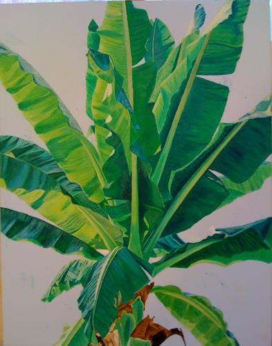 Madeleine Schertenleib, Bananenbaum, Plants: Palm, Expressive Realism