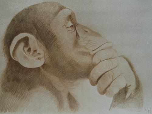 Regina Hermann, Studie, Animals, Others